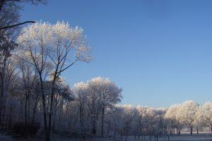 winter-natuurbegraafplaats-weverslo